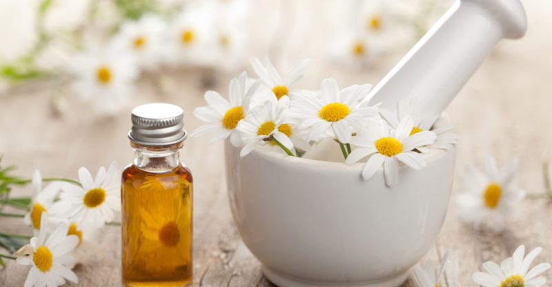 Chamomile Essential Oil - WBO