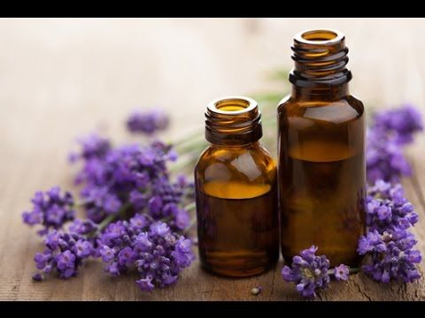 Lavender Essential Oil - WBO-compressed