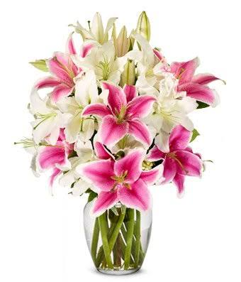 Lilies For Sympathy
