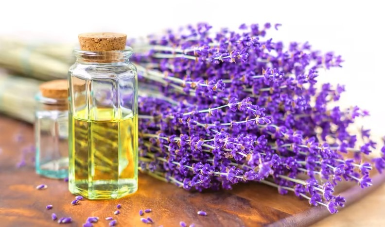 Essential Oils that will help your hair grow quickly