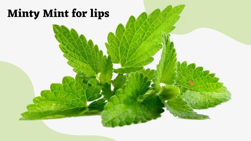 MINTY MINT' FOR LIPS