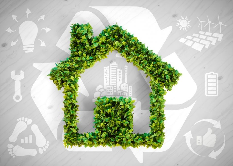 5 Green Home Swaps to Live a More Eco-Friendly Lifestyle.