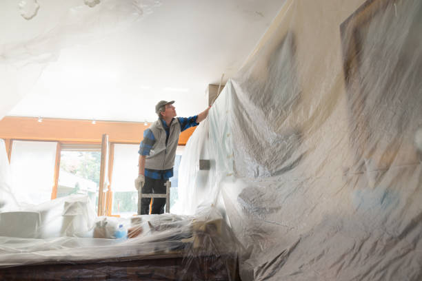 Why Every Homeowner Will Need a Clear Tarpaulin in the Next Decade